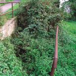 The adit entrance under the road level overgrown with vegetation (state by October 18, 2001)
