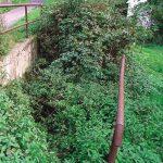 Vegetáciou zarastený vchod do štôlne, pod úrovňou cesty (stav z 18.10.2001).